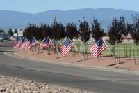 American flags stand along a walkway that borders a road