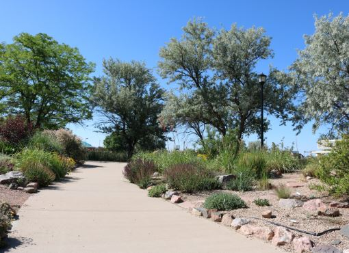 Walking path in Pueblo West