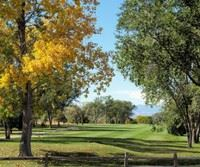 Desert Hawk Golf Course